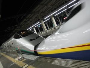 Img_5252